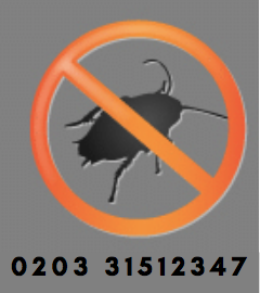 Pest Control Kingston upon Thames